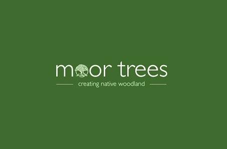 Moor Trees Win the Second Build Back Better Challenge!