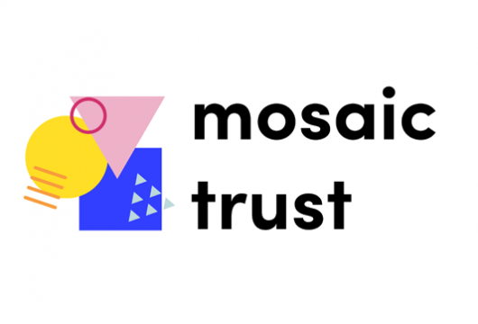 NOVUS ANNOUNCES MOSAIC LGBT+ YOUNG PERSONS' TRUST AS THE THIRD BUILD BACK BETTER CHALLENGE WINNER